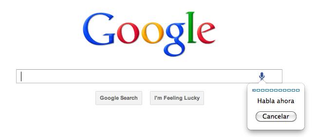 Google Principal